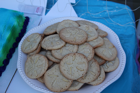 Sand dollar sugar cookies for the win!